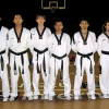 Taekwondo Tricolore Tigers