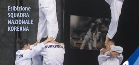 Dimostrazione di Taekwondo della squadra nazionale del Kukkiwon dalla Corea