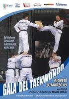 Dimostrazione di Taekwondo