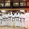 Squadra Dimostrazione Taekwondo a Carpi 2