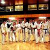 Squadra Dimostrazione Taekwondo a Carpi 3