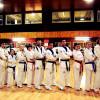 Squadra Dimostrazione Taekwondo a Carpi 4
