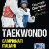 Poster Campionati Italiani Taekwondo 2013